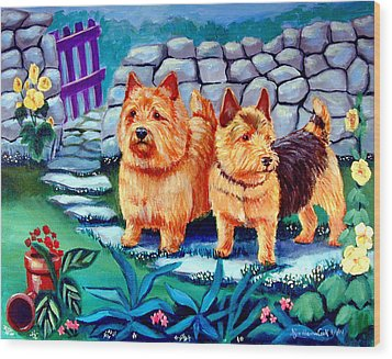 The Purple Gate - Norwich Terrier Wood Print by Lyn Cook