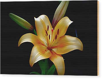 The Queen Lily Wood Print