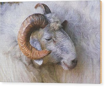 The Ram Wood Print