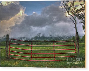 Wood Print featuring the photograph The Red Gate by Douglas Stucky