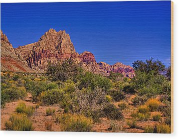 The Red Rock Canyon At Bonnie Springs Ranch Wood Print by David Patterson