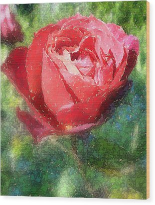 The Red Rose Wood Print by Carol Grimes