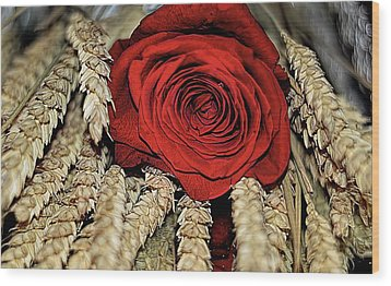 Wood Print featuring the photograph The Red Rose On A Bed Of Wheat by Diana Mary Sharpton