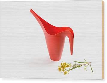The Red Watering Can With Flowers Wood Print by Lynn Berreitter