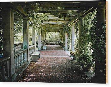 The Resting Spot Wood Print by Ken Marsh