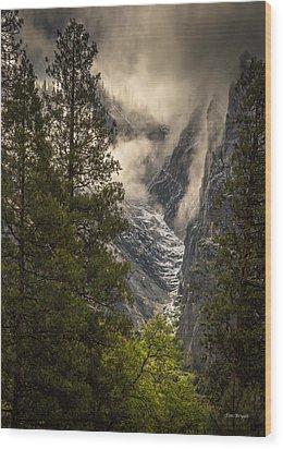 The Rising Wood Print by Tim Bryan