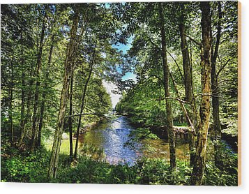 Wood Print featuring the photograph The River At Covewood by David Patterson