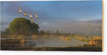 The River Bottoms Wood Print by TL Mair