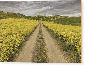 Wood Print featuring the photograph The Road Less Pollenated by Peter Tellone