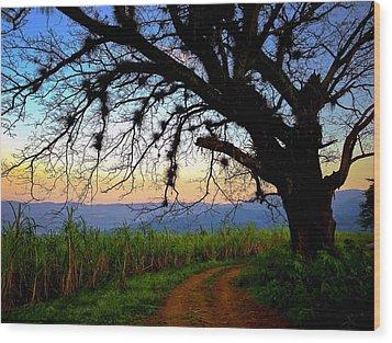 The Road Less Traveled Wood Print by Skip Hunt