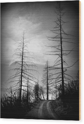 The Road Not Taken    Up On Hwy 2509 Wood Print by Marie Neder