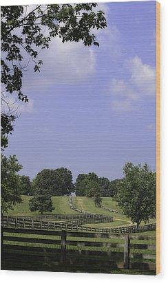 The Road To Lynchburg From Appomattox Virginia Wood Print by Teresa Mucha