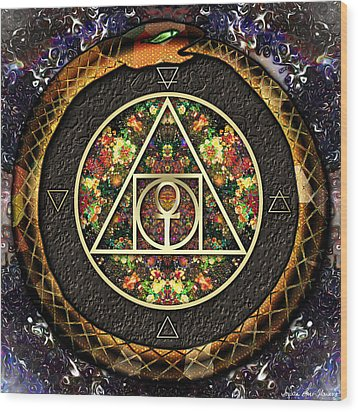 The Sacred Alchemy Of Life Wood Print