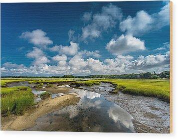The Salt Marshes, Wellfleet Ma Wood Print by Dapixara Art