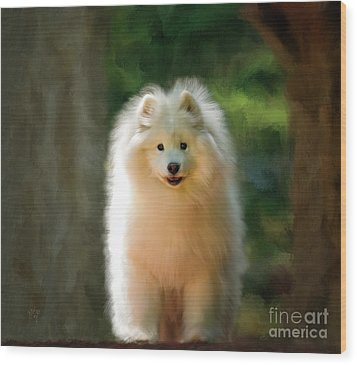 The Samoyed Smile Wood Print by Lois Bryan