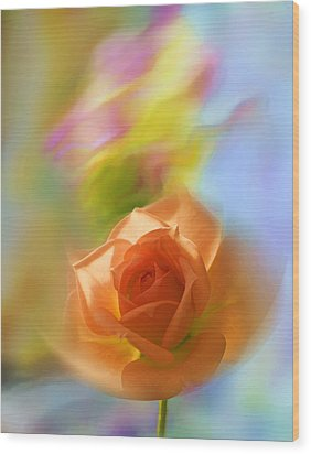 Wood Print featuring the photograph The Scent Of Roses by Vladimir Kholostykh