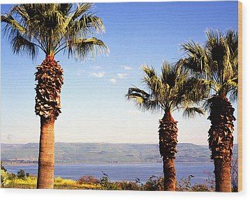 The Sea Of Galilee From The Mount Of The Beatitudes Wood Print by Thomas R Fletcher