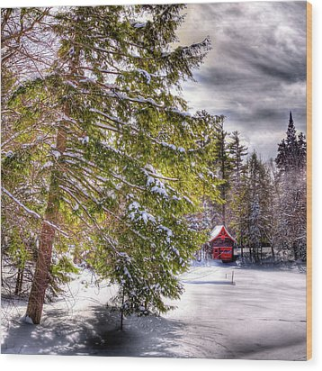 Wood Print featuring the photograph The Secluded Boathouse by David Patterson