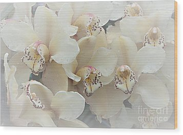 The Secret To Orchids Wood Print by Sherry Hallemeier