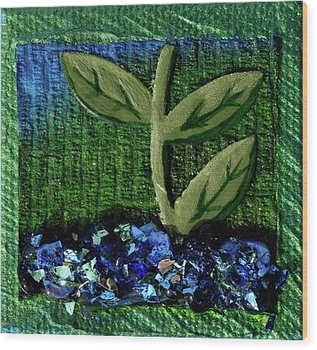 The Seedling Wood Print by Donna Blackhall