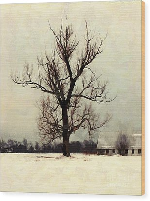 Wood Print featuring the photograph The Sentinel - Lone Winter Tree by Janine Riley