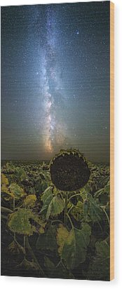 Wood Print featuring the photograph The Sky Above  by Aaron J Groen