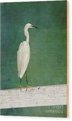 The Small White Heron - Snowy Egret Wood Print