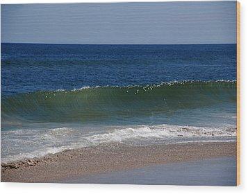 The Song Of The Ocean Wood Print by Susanne Van Hulst