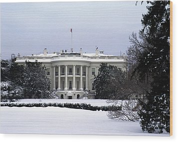 The South View Of The White House Wood Print by Stacy Gold