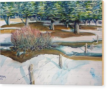The Spring Thaw Wood Print by Steven Holder