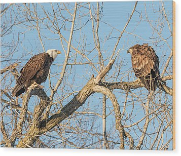 Wood Print featuring the photograph The Stare Down 2017-1 by Thomas Young
