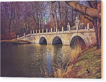 Wood Print featuring the photograph The Stone Bridge In Lazienki Park Warsaw  by Carol Japp
