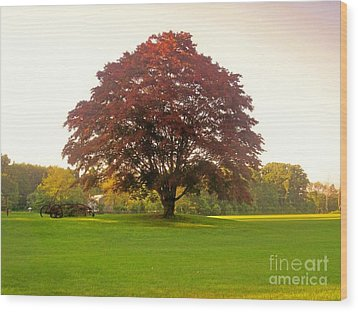 The Storybook Tree Wood Print by Kristine Nora