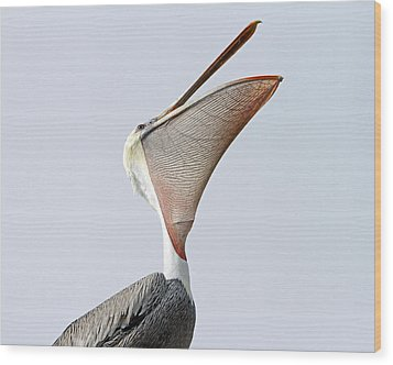 The Stretch  Wood Print by Shoal Hollingsworth