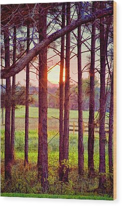 Wood Print featuring the photograph The Sun Pines Away by Jan Amiss Photography