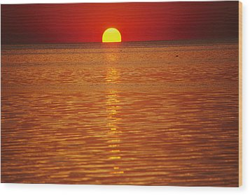 The Sun Sinks Into Pamlico Sound Seen Wood Print by Stephen St. John