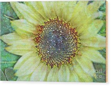 The Sunflower Wood Print by Tara Turner