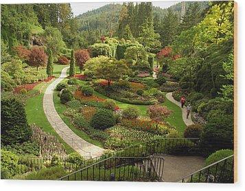 The Sunken Garden At Butchart Gardnes Wood Print by Darlyne A. Murawski