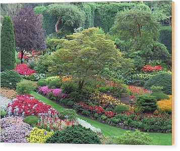 The Sunken Garden At Dusk Wood Print