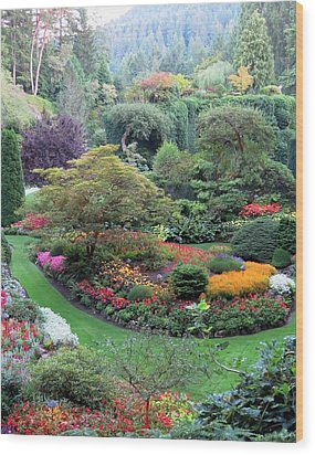 The Sunken Garden Wood Print