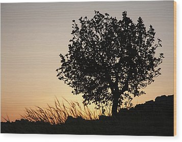 Sunset On The Hill Wood Print by Yoel Koskas