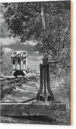 The Switch And The Caboose Wood Print by James Eddy