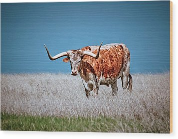 Wood Print featuring the photograph The Texas Longhorn by Linda Unger