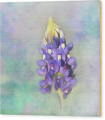 Wood Print featuring the photograph The Texas State Flower The Bluebonnet by David and Carol Kelly