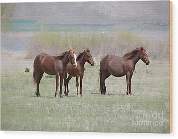 Wood Print featuring the photograph The Three Amigos by Benanne Stiens