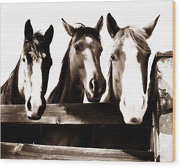 The Three Amigos In Sepia Wood Print by Steve Shockley