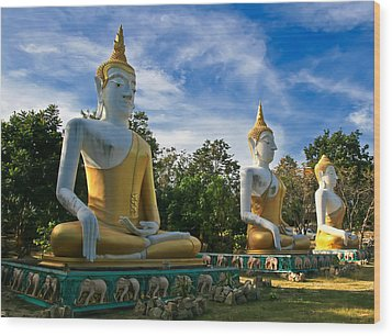 The Three Buddhas  Wood Print by Adrian Evans