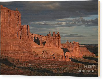 The Three Gossips And Sheeprock Wood Print by Timothy Johnson