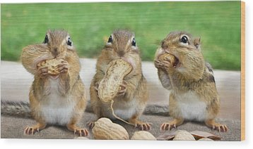 The Three Stooges Wood Print by Lori Deiter