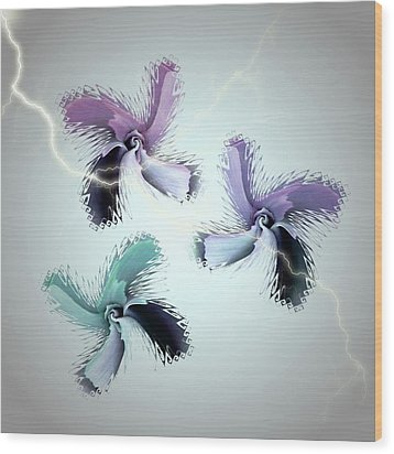 The Thunderbolt Dance Of Rose Butterflies - 3 Wood Print by Jacqueline Migell